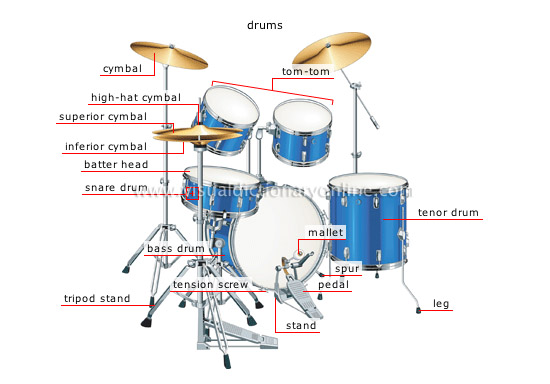 percussion instruments [1]